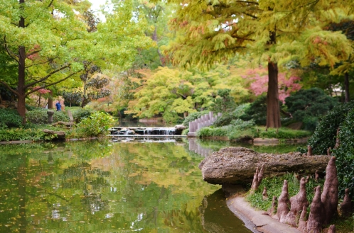 Japanese Botanic Garden, Fort Worth, Texas