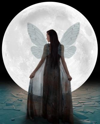 5 Fairy